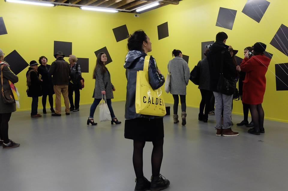 """Vue de l'exposition """"Des Aimants"""" de Véronique Joumard, janvier 2016"""