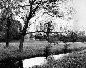 Bas_Jan_Ader-Broken_fall_organic