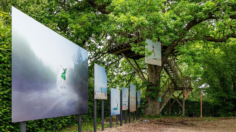 Exposition de photographies en extérieur, paysage arboré,Festival Photo La Gacilly